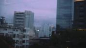 紫月 (VIOLET MOON)