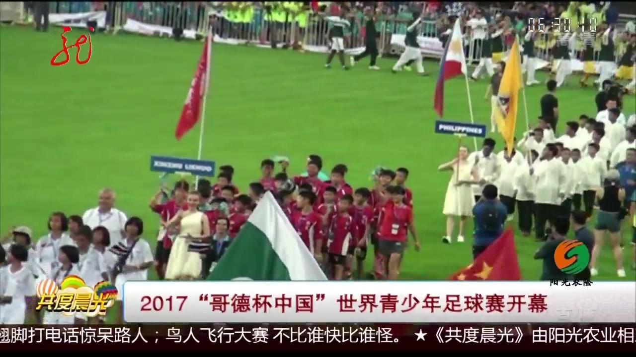 """2017""""哥德杯中国""""世界青少年足球赛开幕"""